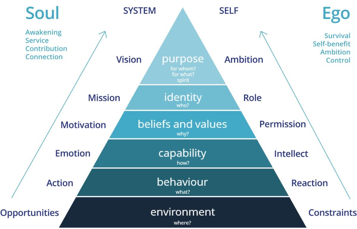 Extended Logical Levels Model